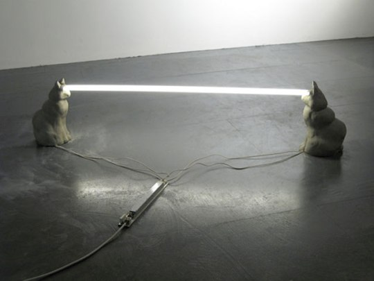 'Staring at Cat Staring at Cat Staring' by Steve Bishop, picture via ffffound.com