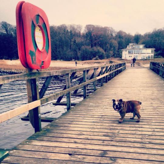 Hugo à la plage