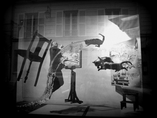 """Schaufensterfoto von Philippe Halsmans """"Dali Atomicus"""""""