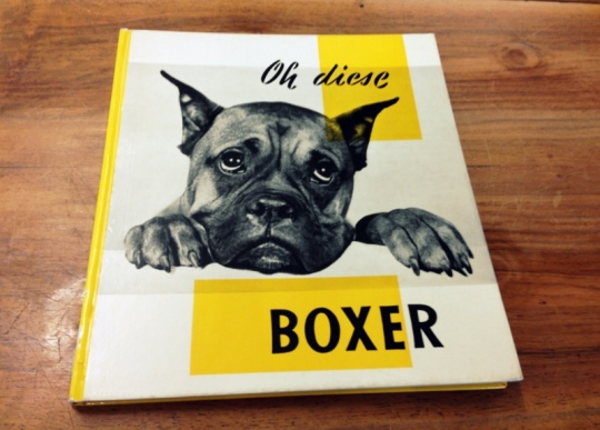 animalicious_Oh diese Boxer!