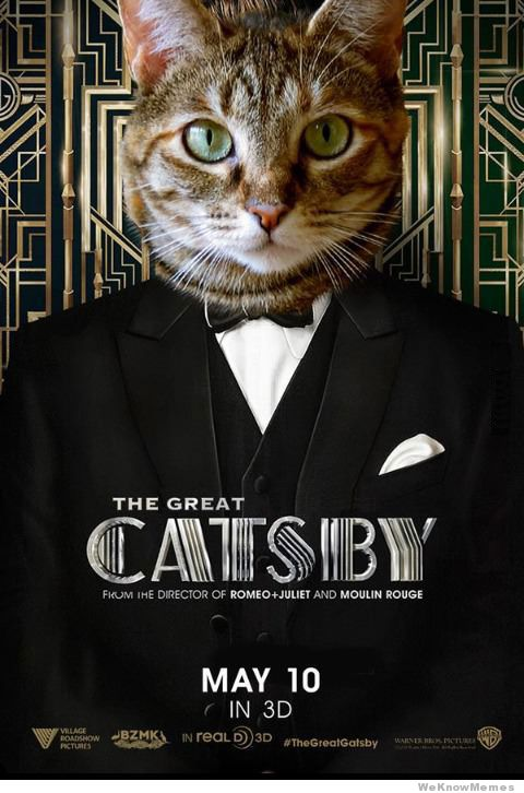 catsby, pic via weknowmemes.com