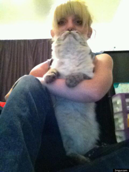 picture Cat-Beard.com
