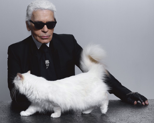 Choupette und Karl, picture via Facebook Page of Choupette