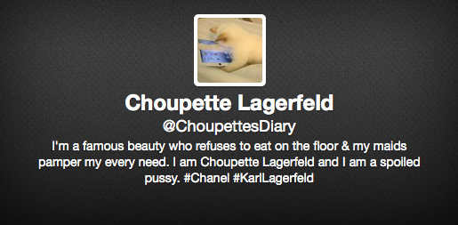 Screenshot Choupette Twitter Account