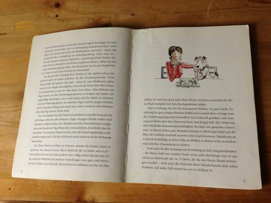 Ratgeber_Braver Hund_Illustration Caroline Ronnefeldt