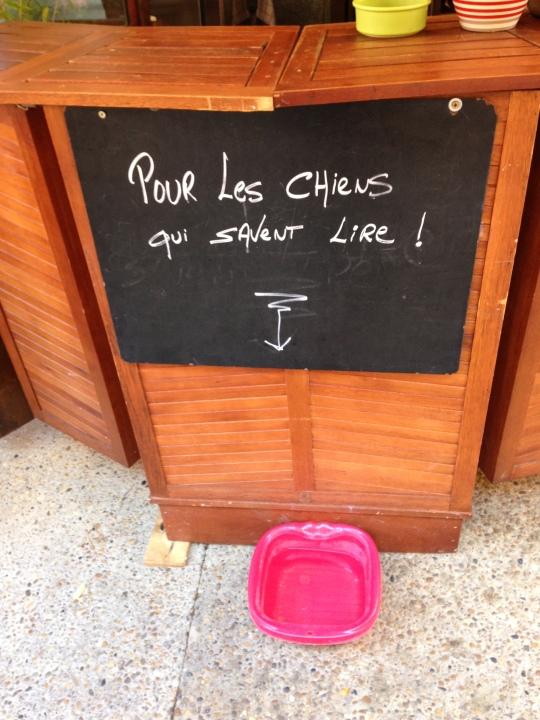 animalicious_Hunde und Französisch