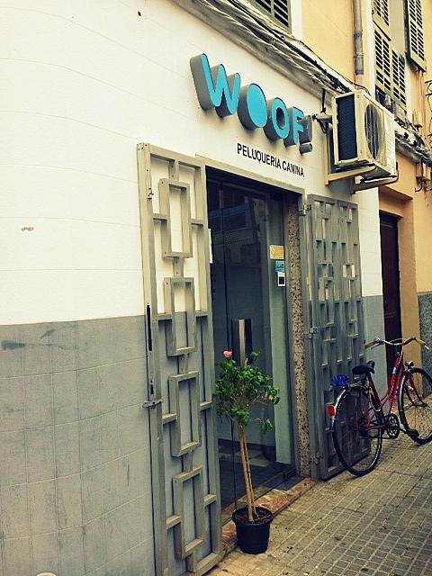 Woof Palma!