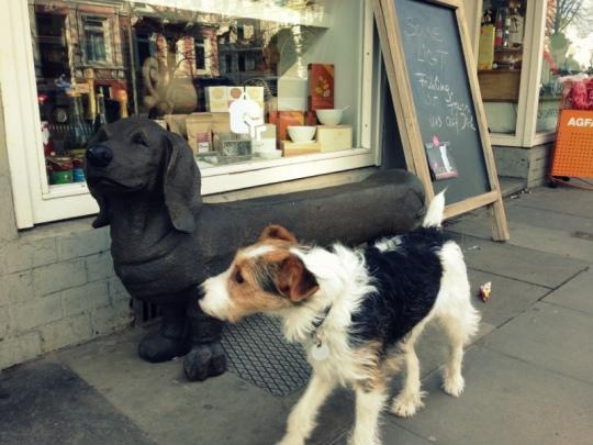 animalicous_Poppy und Dackelbank